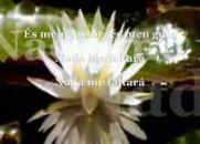 Salmo 23 - Música Espírita