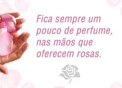 Fica sempre um pouco de perfume nas mãos que oferecem rosas!